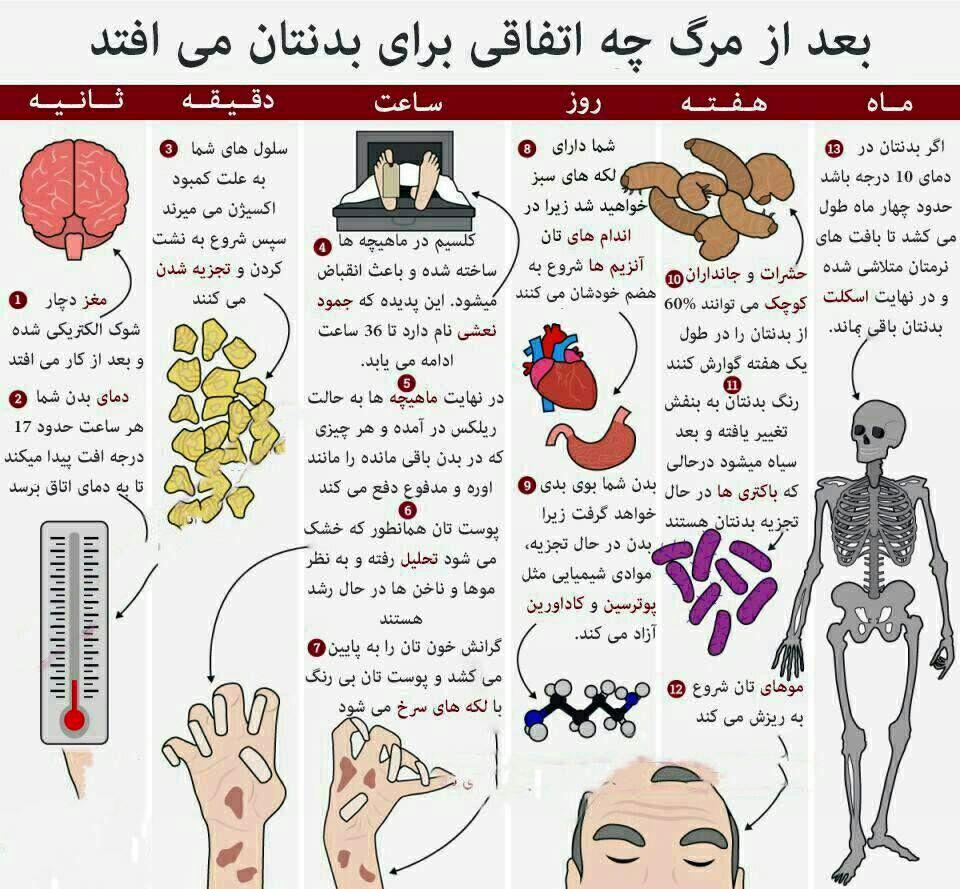 بدن پس از مرگ
