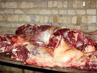 توزیع گوشت الاغ در کشور؟