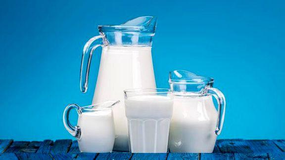 کارخانههای لبنی در گران خریدن شیر روی دست هم بلند میشوند!/ تنظیم تفاهم نامه برای ثبات قیمت محصولات لبنی در بازار