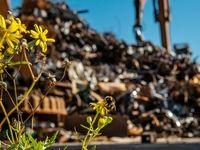 پسماند؛ نخستین معضل زیستمحیطی ایران