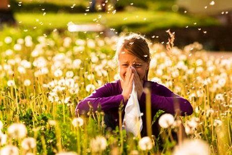 آلرژیهای فصل تابستان را بشناسیم