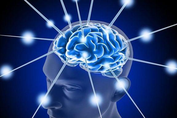 وزنه برداری از مغز در مقابل بیماری آلزایمر محافظت میکند
