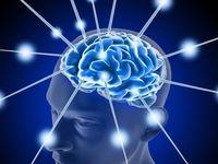 سلامت مغز و بدن را با این روش تضمین کنید