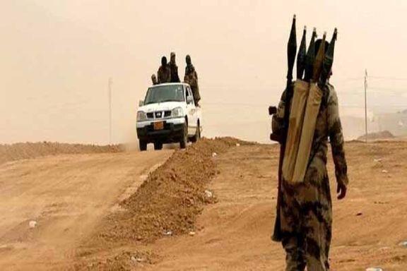 چه تعداد داعشی هنوز در عراق هستند؟