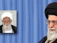 رهبر انقلاب درگذشت آیتالله آصفمحسنی را تسلیت گفتند