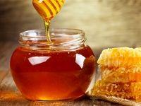 شگردهای مهم در نگهداری و انتخاب عسل