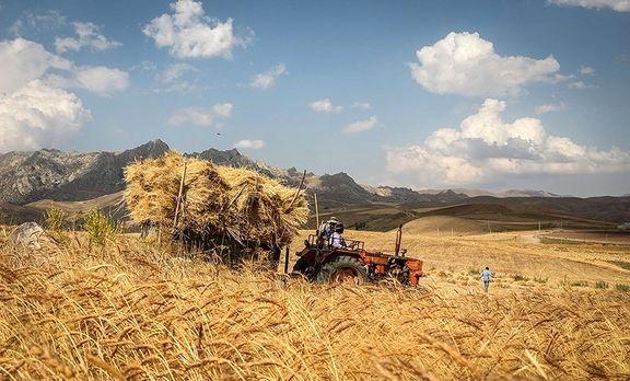 لزوم اصلاح قانون خرید تضمینی محصولات کشاورزی