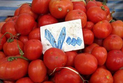گوجه فرنگی گران شد