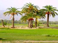 قصرقند، نگین بلوچستان به روایت تصویر