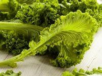 تاثیر مصرف سبزیجات بر پیشگیری از کبد چرب
