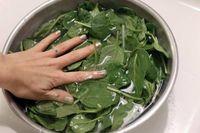شست و شوی سبزیجات با نمک صحیح یا غلط؟ +عکس