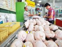 چه کسی به قیمت مرغ بال و پر میدهد!