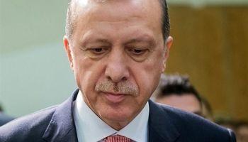 ابراز همدردی «اردوغان» با زلزلهزدگان ایران و عراق