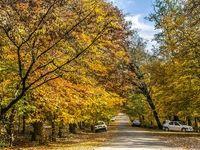 دلبری پاییز در روستاهای خراسان شمالی +تصاویر