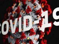 ترکیب مرگبار کووید-۱۹ و آنفلوانزا !
