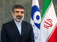 سخنگوی سازمان انرژی اتمی:به زودی ۱۳۰تن اورانیوم خریداری شده وارد ایران میشود