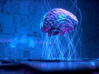 محققان: افکار شما مغزتان را تغییر میدهد