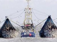 حضور ناظر ایرانی بر روی عرشه کشتیهای چینی صید ماهی در جنوب ایران