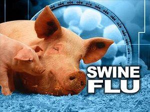 شیوع آنفلوانزای خوکی در گرجستان
