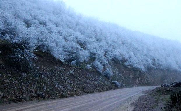 ییلاقات گیلان پوشیده از برف