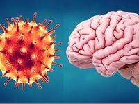 نحوه اثرگذاری کووید۱۹ بر مغز