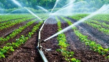 صرفه جویی در آب کشاورزی، با وجود هزینه میلیاردی شکست خورد