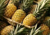گرانترین میوههای بازار کدامند؟