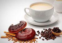 قهوه گانودرما برای چی خوبه؟ +عکس