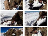 کشف جسد یخ زده دختر جوان در کوههای دروان +عکس