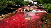 شگفت انگیزترین رودخانه جهان +تصاویر