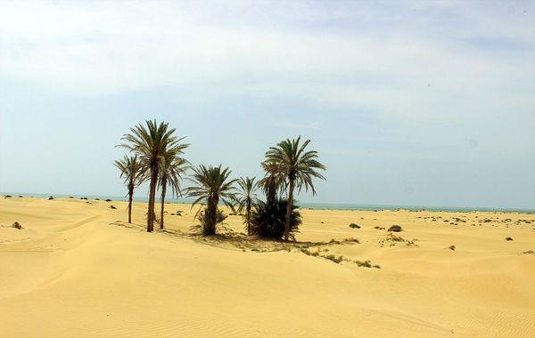 ساحل درک زرآباد چابهار