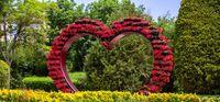 باغ گلها اصفهان +تصاویر