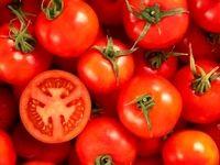 ویتامینها و مواد معدنی تقویت کننده سیستم ایمنی را بشناسید