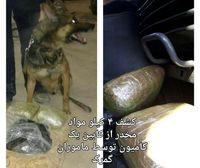کشف ۴کیلو موادمخدر توسط سگ موادیاب +عکس