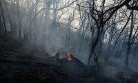 پنجمین روز اطفای حریق در جنگلهای گلستان +عکس