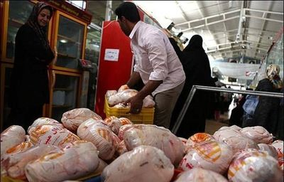 اوجگیری قیمت مرغ در گرمای تابستان