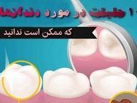 ۱۰حقیقت درباره دندانها که ممکن است ندانید +اینفوگرافیک
