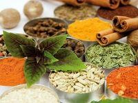 غفلت از فرصت صادراتی گیاهان پولساز