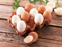 تخممرغ همچنان گران است