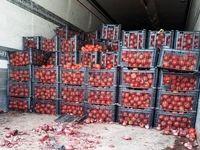 صادرات نقشی در گرانی گوجه نداشت