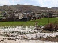 چرا خسارت بخش کشاورزی مناطق سیلزده هنوز پرداخت نشده؟