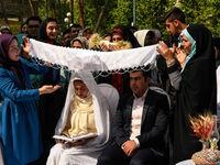 طلاق در ازدواجهای دانشجویی یک پنجم متوسط کشوری