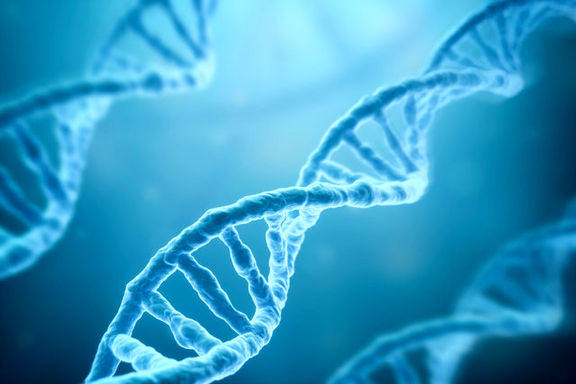 توصیه مفید برای غلبه بر ژن چاقی