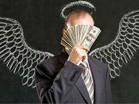 سرمایه گذاران فرشته خو به دنبال چه هستند؟