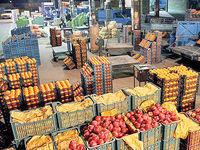 خزان تراز تجاری کشاورزی در بهار ۹۸