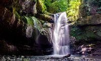 آبشار رویایی در قلب جنگل های گیلان + عکس