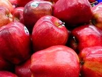 چرا سیب مهمترین میوه دنیاست؟