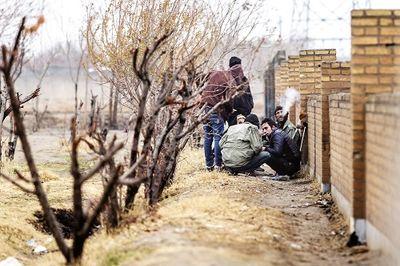 توزیع مخدر دولتی باعث از بین رفتن قاچاقچیان میشود؟