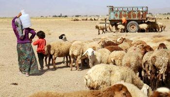 آبرسانی به عشایر خراسان شمالی +عکس