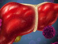 تولد نوزاد هپاتیتی از سال ۹۰تاکنون در یزد گزارش نشده است
